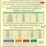 Statelife Insurance