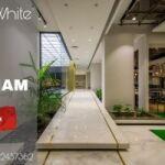 Cane White Marble