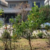 House ? for sale In DHA Phase-2
