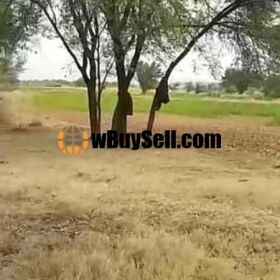 AGRICULTURE LANDS FOR SALE AT FATH E JHANG MOZA JANDIYAL
