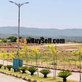 25X50 PLOT IS AVAILABLE FOR SALE IN INVESTOR RATE