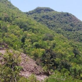20 Kanal Land for Sale in Shadra Islamabad