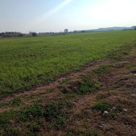 41 Kanal Land for Sale Moza Dhalla Adyala Road Rawalpindi