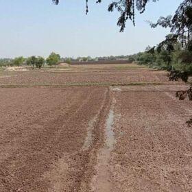 Farm Poultry and Vegetation Farms Scheme for SALE