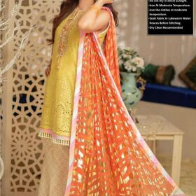 Lawn Chiffon Printed Embroidery Neckline & Daman Embroidery for SALE
