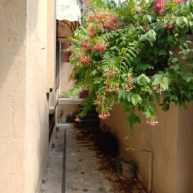 10 Marla House with Basement for Sale in Airport Housing Society Phase 2 Rawalpindi..