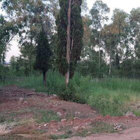 40 MARLA SHAHEEN FARMS PLOT NO 4 ISLAMABAD FOR SALE